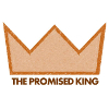 The Promised King - Studies in Matthew 1-4